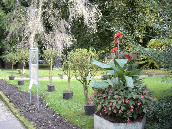 Le-Jardin